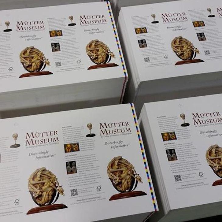 Mutter Museum Rack Cards